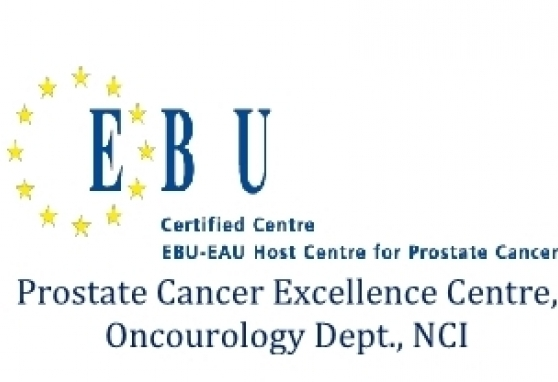 EBU training 2020: Diagnosis and treatment of local and advanced (oligometastatic and metastatic) prostate cancer