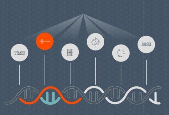 Genetinis ištyrimas leis tiksliai skirti taikinių terapiją